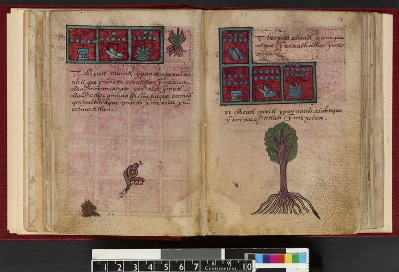 Codex Aubin_Fol.13v-14r.jpg