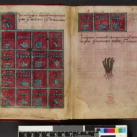 Codex Aubin_Fol.7v-8r.jpg