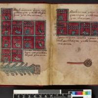 Codex Aubin_Fol.8v-9r.jpg